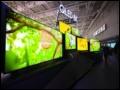 总台将在北京冬奥会前开通8K频道 三星电视助力8K普及